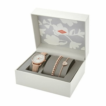 Fossil Tailor Box Set