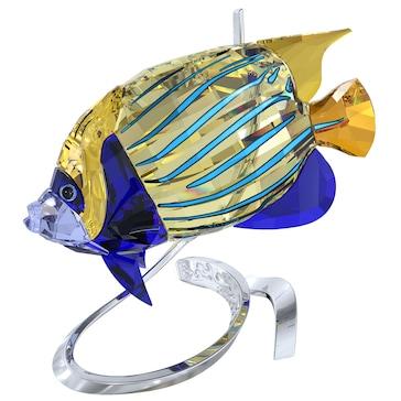 Swarovski Imperator Kaiserfisch, Jonquil