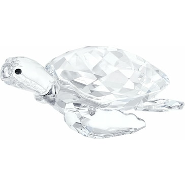 Swarovski Meeresschildkröte 5063691