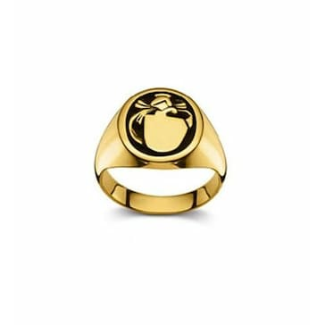 Wappenring 750/18 K Gelbgold